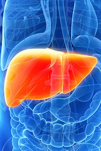Approach to Disorders in Liver Function Tests in Children