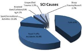 Traumatic Spinal Cord Injury-Incidence and Epidemiology - A Monograph