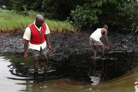 Biodiversity Issues in Fresh Waters of Niger Delta