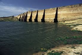 Determining the Economic Value of Water for Industrial Uses: The Case Study of Iran