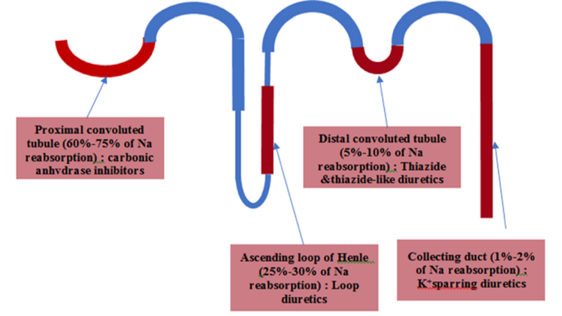 Diuretic Resistance in Acute Decompensated Heart Failure: Management strategies