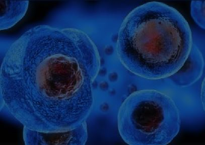 How and Why I Coined the Term Cellular Dust
