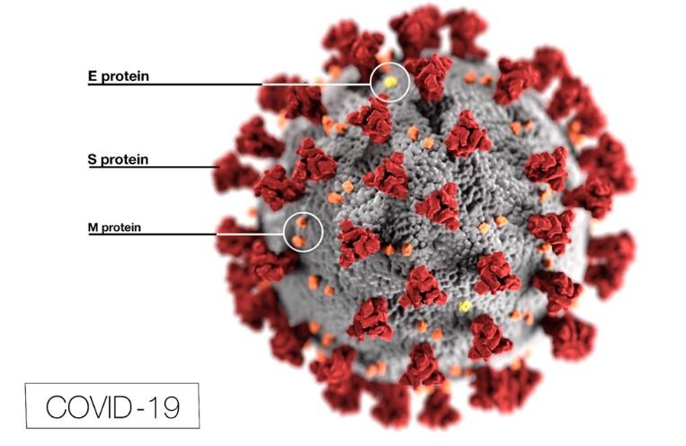Investigation the Effect of NA2SIO3/Sio2/Tio2 Nanocomposites against Severe Acute Respiratory Syndrome Coronavirus 2 (SARS-Cov-2) Measured Using Plaque Assay