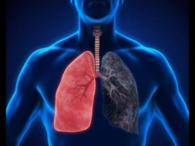 Journal of Pulmonary Diseases and Respiratory Medicine