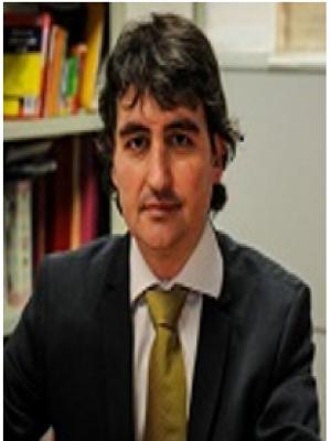 Fernando J Garrigos Simon