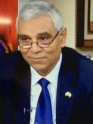 Professor Abdelmonem Awad Hegazy