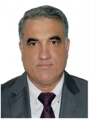Amin Zeki Sadik